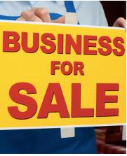 Maximizing Company Value (2)